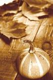 Image de sépia de thanksgiving avec le potiron et les feuilles d'automne Image stock