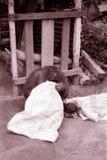 Image de sépia du Bornéo d'orang-outan Photos libres de droits
