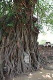 Image de tête de Bouddha chez Wat Mahathat Photographie stock libre de droits
