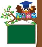 Image 3 de thème de professeur et de jeunes hiboux de hibou Photos libres de droits