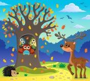 Image 5 de thème d'arbre de hibou Image libre de droits