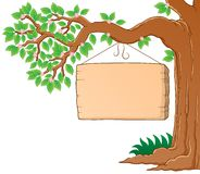 Image de thème de branchement d'arbre au printemps Photo stock