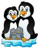 Image 1 de thème de famille de pingouin Photographie stock