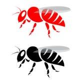 Image de vecteur d'un beel Image libre de droits