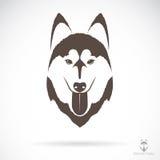 Image de vecteur d'un chien de traîneau sibérien de chien illustration libre de droits