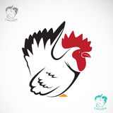 Image de vecteur d'un poulet Image libre de droits