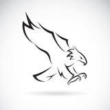 Image de vecteur d'une conception d'aigle Photos stock