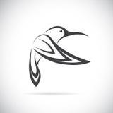 Image de vecteur d'une conception de colibri Photographie stock