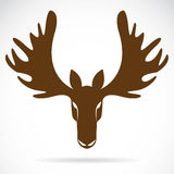 Image de vecteur d'une tête de cerfs communs Image stock