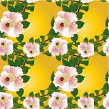 Image de vecteur Fleurs - composition décorative wallpaper Configuration sans joint Photo stock