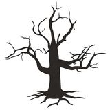 Image of dead tree Royalty Free Stock Images