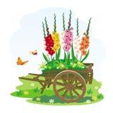 Image of decorative garden wheelbarrow with beautiful flowers Royalty Free Stock Image