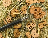 image des coeurs, de la loupe et des lettres en bois sur l'herbe sèche Photos libres de droits