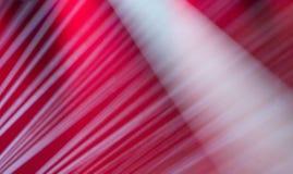 Image des effets de la lumière d'étape images stock