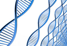 Image of DNA strand Stock Photo
