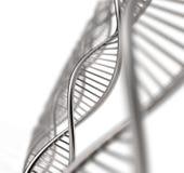 Image of DNA strand Stock Photo