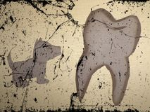 Image of dog in front of image of tooth Stock Photos