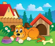 Image with dog theme 6 Royalty Free Stock Photo