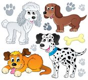 Image with dog topic 3 Royalty Free Stock Photos