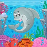 Image with dolphin theme 6 Royalty Free Stock Photo