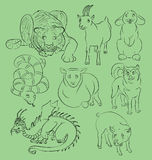 Image of a dragon dog, goat, pig, rabbit, sheep, snake and tiger. Suitable for a child`s coloring, and not only. For your convenience, each significant vector illustration