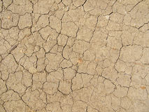 Image of dried land Stock Photography