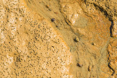 Image of dry mud Royalty Free Stock Photography