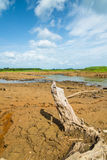 Image of dry river with blue sky Stock Photos