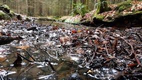 Image du chemin au Schwellhäusel dans la forêt bavaroise (Allemagne) Photos stock