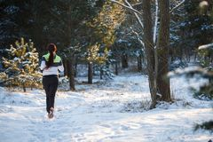 Image du dos du jeune athlète marchant par la forêt d'hiver Images stock