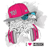 The image of the eagle in the glasses and headphones. Vector illustration. Stock Photo