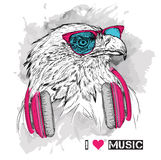 The image of the eagle in the glasses and headphones. Vector illustration. Stock Photography