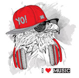 The image of the eagle in the glasses and headphones. Vector illustration. Stock Photos