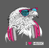 The image of the eagle in the glasses and headphones. Vector illustration. Royalty Free Stock Images