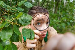 Image of ecologist man with magnifying glass Royalty Free Stock Photography