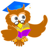 Image of Educational Owl Royalty Free Stock Photos
