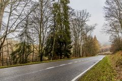 Image of a empty forest road between trees on a cloudy day. Beautiful image of a empty forest road between trees on a cloudy day in the Belgian Ardennes royalty free stock photography