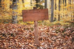 Image of empty road sign on the forest. Image of empty road sign on the forest trail Stock Image