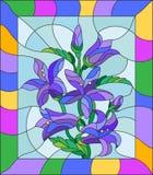 Image en verre souillé des fleurs des jacinthes des bois dans un cadre lumineux Image libre de droits