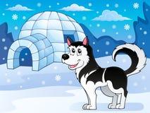Image enrouée 3 de thème de chien Photos libres de droits
