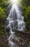 Image of Fairy Falls in Columbia Gorge River Royalty Free Stock Images