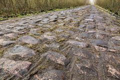 Pave d`Arenberg. Image of the famous cobblestone road from the forest of Arenberg Pave d`Arenberg. Every year it is part of the route of Paris Roubaix one of the Stock Image