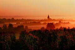Sunset over the vineyards in the loire valley. This image features a sunset over the vineyards in the loire valley stock photos