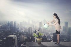 Female entrepreneur watering startup word stock illustration