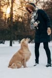 Image of female with labrador in winter park for walk. At afternoon Stock Photography