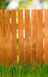 Image of the fence and the grass in the garden closeup Royalty Free Stock Image