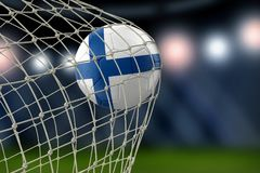 Finnish soccerball in net. Image of Finnish soccerball in net Royalty Free Stock Images