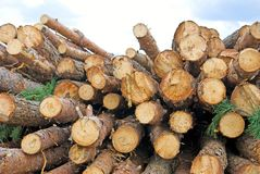 Image of firewood Royalty Free Stock Photos