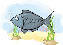Image of the fish. In the sea vector illustration