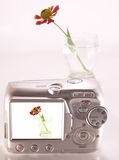The image of a flower in a glass. Camera viewfinder stock photography